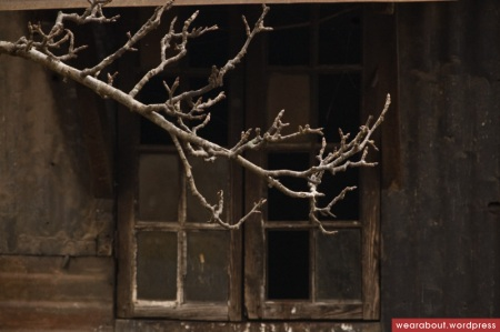 winter in shillong